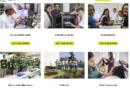Cursos que podéis realizar para alzar vuestra experiencia laboral con Fundación Tomillo